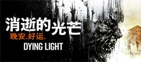 《消逝的光芒》怎么联机?